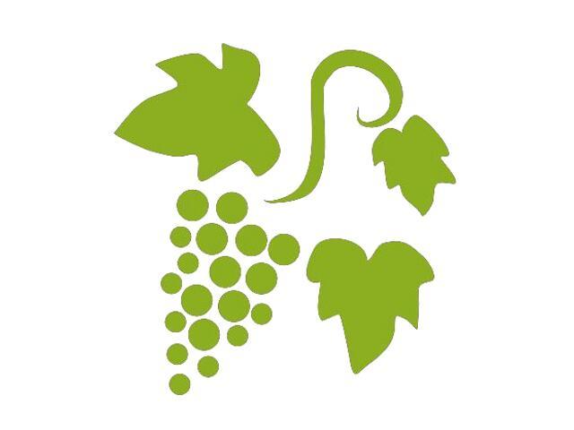 Naklejka dekoracyjna welurowa winogrona 675030-5 Klimaty Domu