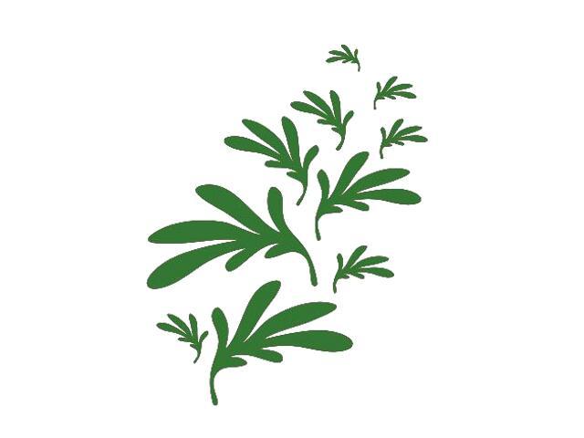 Naklejka dekoracyjna welurowa liście 673002-9 Klimaty Domu