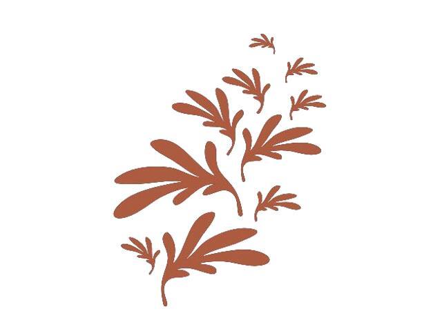 Naklejka dekoracyjna welurowa liście 673002-2 Klimaty Domu