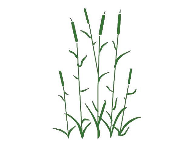 Naklejka dekoracyjna welurowa rośliny 673018-9 Klimaty Domu