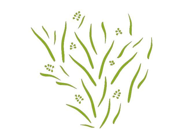 Naklejka dekoracyjna welurowa rośliny 673019-5 Klimaty Domu