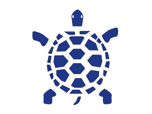 Naklejka dekoracyjna welurowa żółw 673033-13 Klimaty Domu