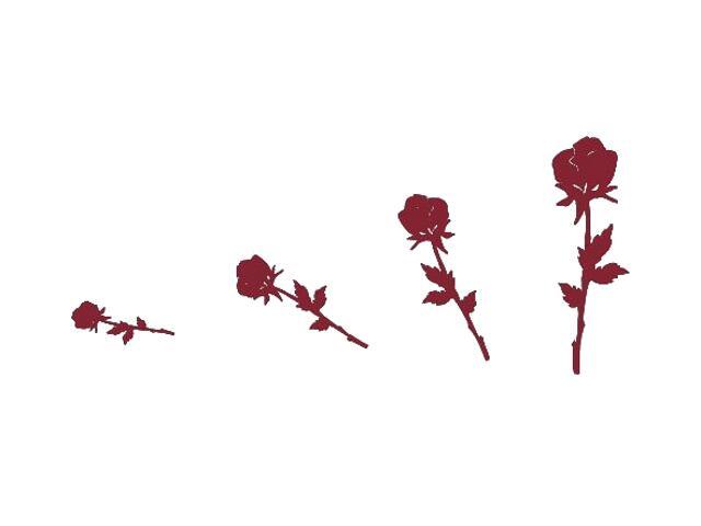 Naklejka dekoracyjna welurowa róże 671005-11 Klimaty Domu