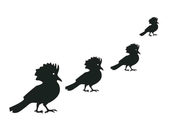 Naklejka dekoracyjna welurowa ptaki 671008-7 Klimaty Domu