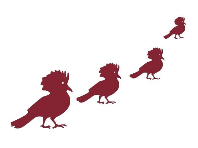 Naklejka dekoracyjna welurowa ptaki 671008-11 Klimaty Domu