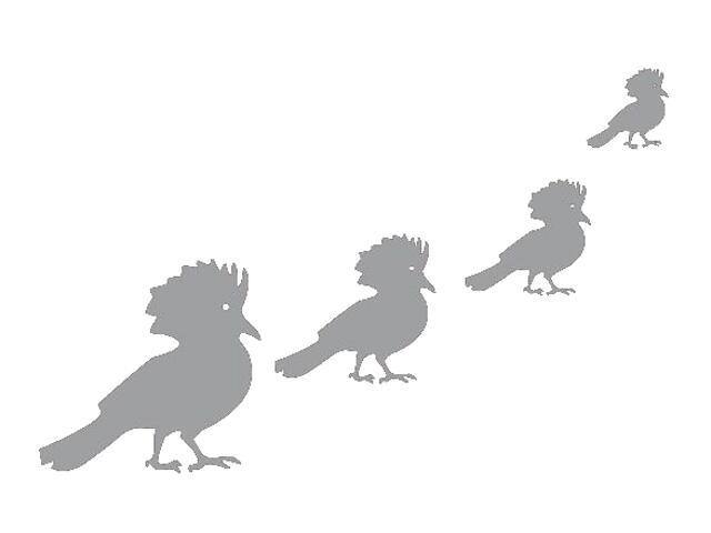 Naklejka dekoracyjna welurowa ptaki 671008-12 Klimaty Domu