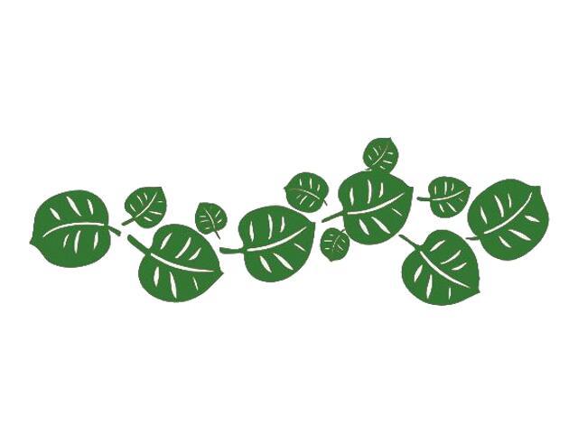 Naklejka dekoracyjna welurowa liście 671015-9 Klimaty Domu