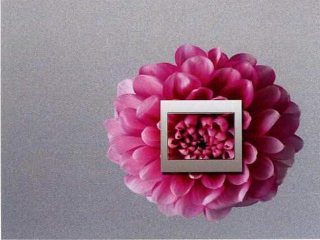 Naklejka dekoracyjna pod wyłącznik kwiat EL00306 Ergis