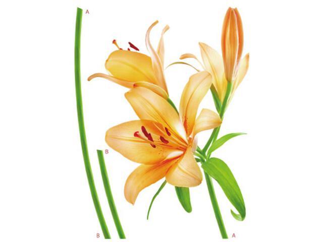 Naklejka dekoracyjna kwiat F00450 Ergis