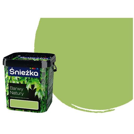 Farba kolorowa Barwy Natury zielona herbata 5L ŚNIEŻKA