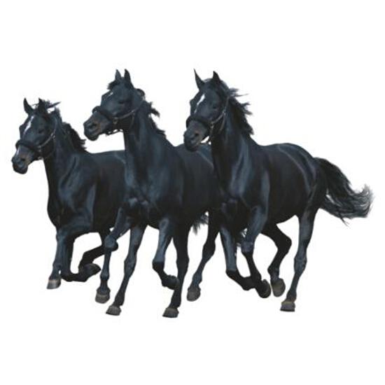 Naklejka dekoracyjna horses Decostickers 9 PRIMACOL