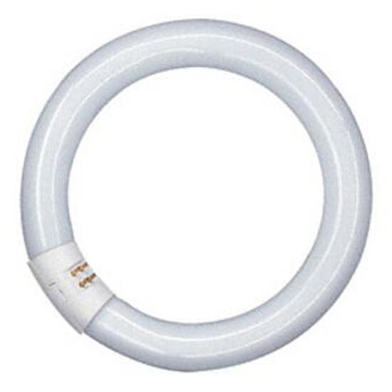 Świetlówka okrągła Lumilux T8 C Circline 40W/840C G10q Osram