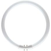 Świetlówka okrągła MASTER TL5 Circular 40Wx2GX13 biały ciepły 8711500640970 Philips